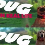 Watch This Adorable VIDEO Of Disney•Pixar's Dug the Talking Dog In Real Life. Disney IRL Series Launched!