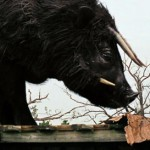 BEASTS OF THE SOUTHERN WILD – New Aurochs Featurette