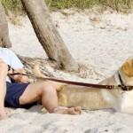 Owen Wilson Develops 1980s Porn Business Drama Series For Starz