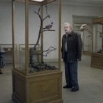 @MagnoliaPics Acquires Roy Andersson's A PIGEON SAT ON A BRANCH REFLECTING ON EXISTENCE