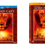 AFRICAN CATS Blu-Ray Review