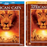 AFRICAN CATS On Blu-Ray And DVD On 10/4